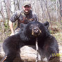 Manitoba Black Bear Hunt